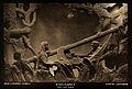 David Livingstone memorial in Blantyre; Livingstone being tr Wellcome V0018875.jpg