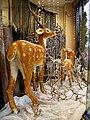 Deer, Magic Moments, Omagh - geograph.org.uk - 632533.jpg
