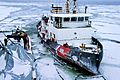 Defense.gov News Photo 110202-G-0000X-001 - Crewmembers aboard the U.S. Coast Guard Cutter Morro Bay a 140-foot icebreaking tug prepare to pull alongside the Canadian coast guard ship.jpg