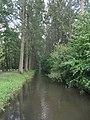 Delbrück-Boker-Heide-Kanal-2.jpg