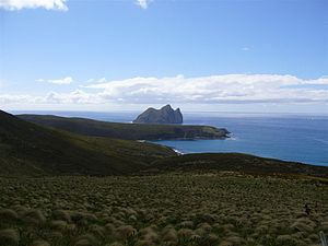 Dent Island, New Zealand - Dent Island: In the distance
