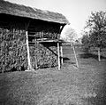 Dera pri kozolcu, Gradež 1948.jpg