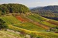 Diefenbach 10-2014 - panoramio.jpg