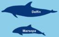 Dif marsopa delfin.png