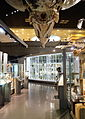 Displays - National Museum of Nature and Science, Tokyo - DSC07473.JPG