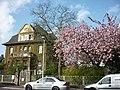 Dollendorfer Straße im Frühling, 04.2011 - panoramio.jpg