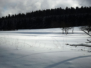 Germany. A Winter's Tale - Winter landscape near Schmitten, Hesse