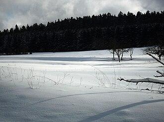Germany. A Winter's Tale - Winter landscape near Schmitten, Hesse