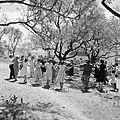 Dorpsbewoners dansen sardana op een weide, Bestanddeelnr 254-0861.jpg