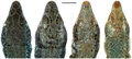 Dorsal view of the heads of the holotypes of four Darevskia species - journal.pone.0080563.g006.png