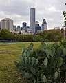 Downtown and Prickly Pear (5193482328).jpg