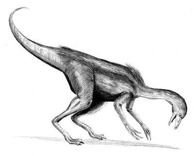 Dromiceiomimus BW.jpg