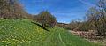 Duben vysenske kopce 03.jpg
