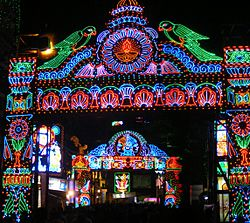 Durga Puja Lights