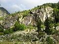 E07 Paret de roca vora la Noguera de Tor.jpg