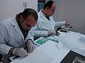 EICAP photo conservation Practical session .jpg
