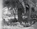 ETH-BIB-Garten in Fès-Nordafrikaflug 1932-LBS MH02-13-0329.tif