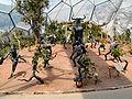 Eden Sculptures.jpg