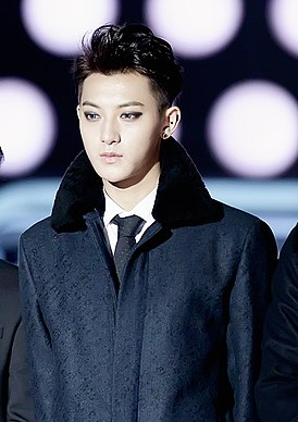 Edison Huang (Tao Huang) at the 16th Mnet Asian Music Awards 01.jpg