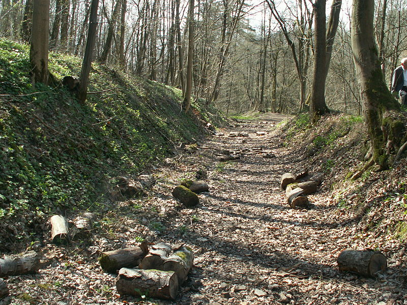 The zinc ore was transported from the exit Oskarstollen of the pit Schmalgraf to the smelting in Kelmis over this 2400 meters long former railway by the Hohn valley.