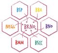 Ekosystem brno.png