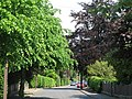 Elvaston Road (2) - geograph.org.uk - 843498.jpg