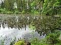 Entenweiher Hinterzarten 05.jpg