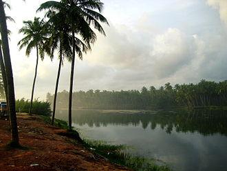 Geography of Kerala - Estuary in Thekkumbhagam, Paravur