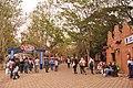 Expoflra 2010 em Holambra オランブラ花祭り - panoramio.jpg