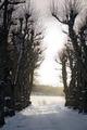 Exteriörbilder. Vinter. Lindallé - Skoklosters slott - 86496.tif
