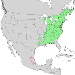 Fagus grandifolia range map 1