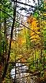 Fall - panoramio (12).jpg