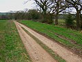 Farm road and path to Stydd Hall - geograph.org.uk - 366627.jpg