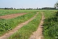 Farm track off Eastern Road - geograph.org.uk - 537454.jpg