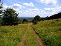Feldweg in der Rhön - panoramio.jpg