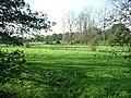 Fields near Eade's Mill - geograph.org.uk - 73818.jpg