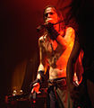 Finntroll Paris 9 11 2008 08.jpg