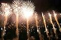 Fireworks in Edogawa, Tokyo; August 2008 (15).jpg