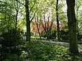 Fischers Park Eingang Elbchaussee.jpg