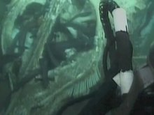 File:Fish-Food-in-the-Deep-Sea-Revisiting-the-Role-of-Large-Food-Falls-pone.0096016.s005.ogv