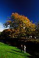 Flickr - JennyHuang - Christchurch (New Zealand) (6).jpg