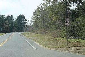 Florida State Road 73 - Looking south at Florida State Road 73 in Clarksville at SR 20