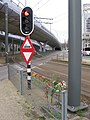 Flowers to commemorate the victims of the tram attack on March 18, 2019 at the 24 Oktoberplein, Utrecht.jpg