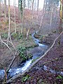Flowing Below Parkend Church - January 2014 - panoramio.jpg