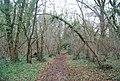 Footpath in Poer Meadow Shaw - geograph.org.uk - 1611511.jpg