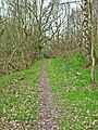 Footpath in Tursdale Wood - geograph.org.uk - 155887.jpg