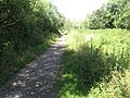 Footpath near Titchfield Haven - geograph.org.uk - 865911.jpg