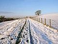 Footpath to East Barnley - geograph.org.uk - 1640333.jpg