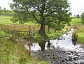 Ford, Burns Beck - geograph.org.uk - 1512028.jpg