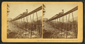 Frankenstein Trestle and Train, P. & O.R.R., Crawford Notch, N.H, from Robert N. Dennis collection of stereoscopic views 2.png